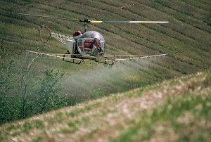 Helicopter Spraying Herbicide on Fields